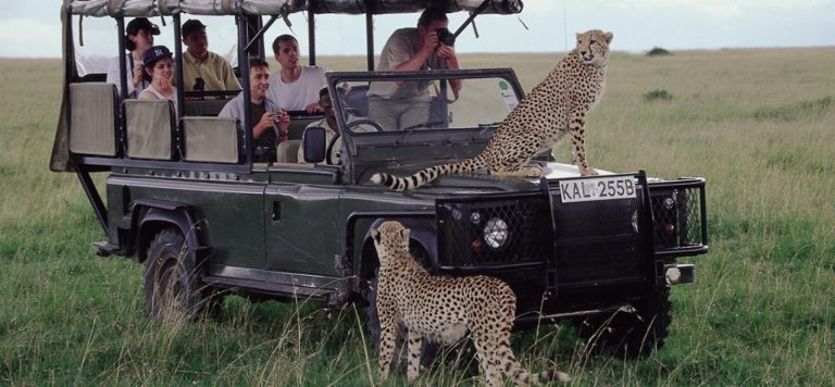 Tours-And-Safaris-In-Kenya-768×356
