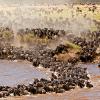 kenya-tours