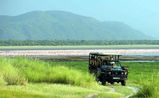 Lake .Manyara